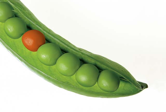 peas with one different color